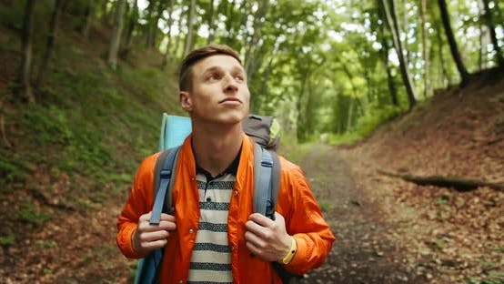 Cover Image for Man with Backpack Walking in Forest