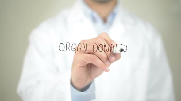 Thumbnail for Organ Donation, Doctor Writing on Transparent Screen