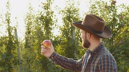 Fruit Quality Control