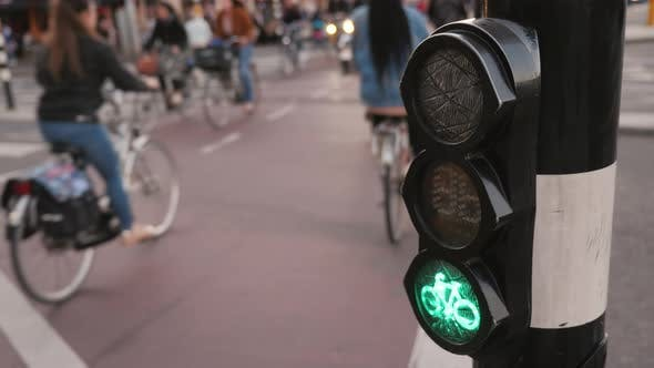 Thumbnail for Mad Traffic Bicyclists on the Street in Amsterdam