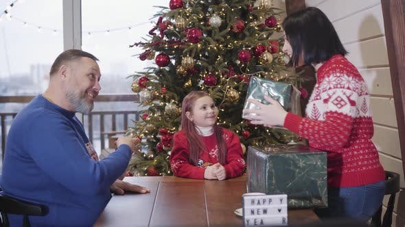 Thumbnail for Excited Little Girl Receiving Big Chrismas Gift Box From Parents. Portrait of Charming Cute