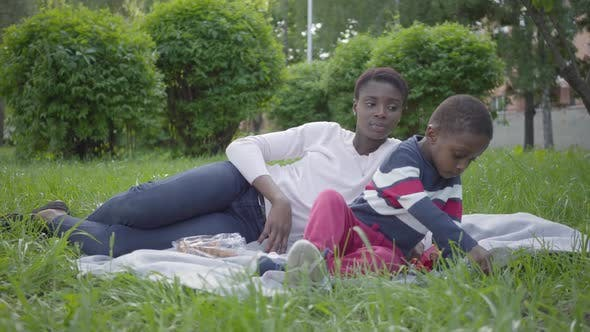 Thumbnail for Attractive African American Woman Lying on the Blanket with Her Little Son in the Park