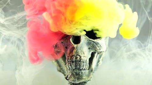 Skull ink Ink Drops Transition