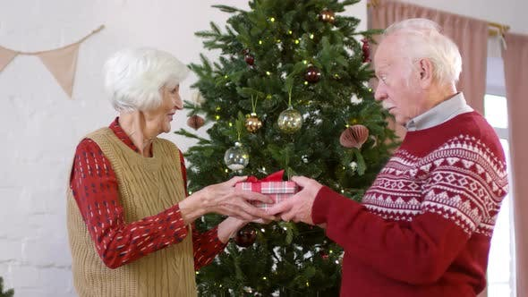 Thumbnail for Elderly Woman Giving Christmas Present to Man