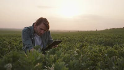 Bearded Man Sits with Black Tablet on a Field