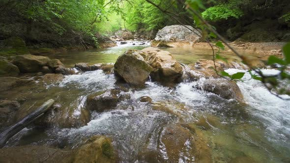 Footage Of Stream Flowing Through Rocks In Forest