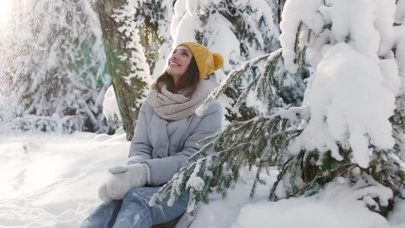 Portrait of a Beautiful Female in a Winter Forest Cheerful Young Woman Sitting Next To a Tree