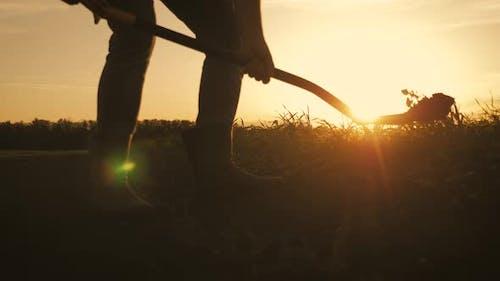 Farm Agriculture Concept