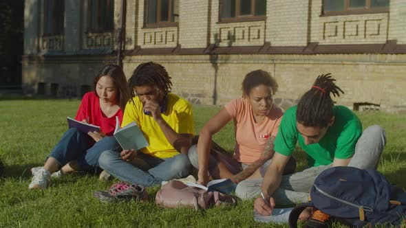 Thumbnail for Multiethnic College Students Preparing for Exams