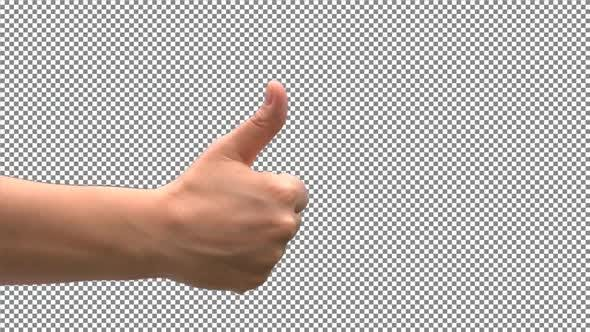 Thumbnail for The Hand symbol of Like