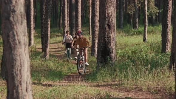 Счастливая семья Велоспорт в лесу