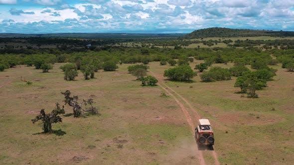 Thumbnail for Safari Tour