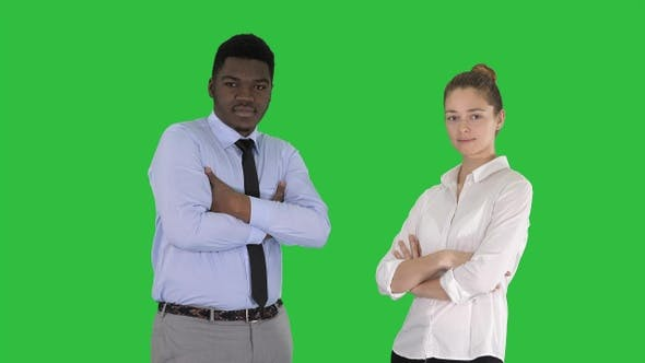 Thumbnail for International business people standing with folded arms
