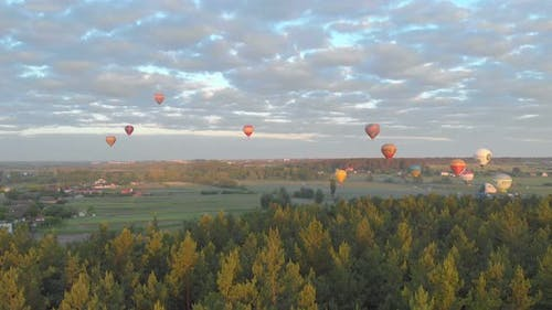 Flying Balloons Forest