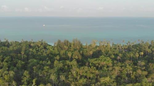 Aerial: uncontaminated coastline tropical beach caribbean sea coral reef atoll