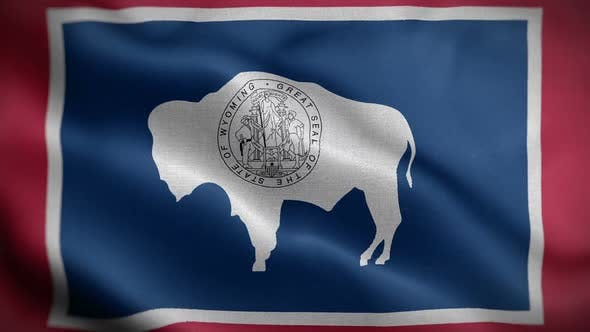 Thumbnail for Wyoming State Flag Blowing In Wind