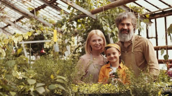 Thumbnail for Portrait of Happy Grandparents and Little Girl in Greenhouse Farm