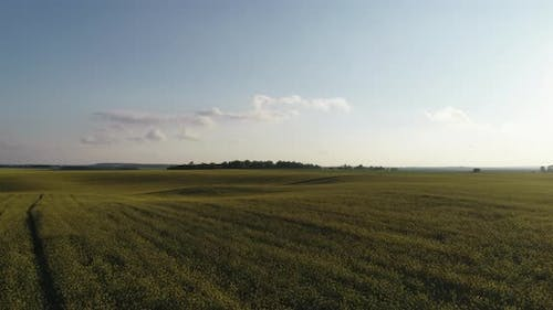 Landscapes Of Ukraine From Aerial View Field And Sky