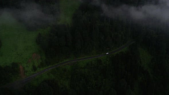 Cover Image for Mountain Forest Road Car