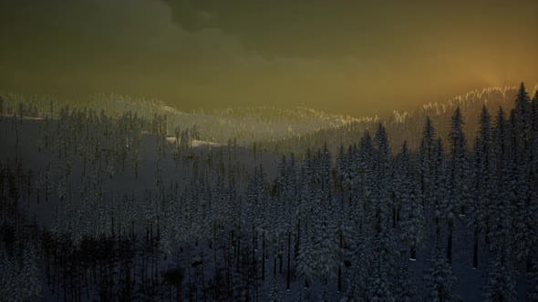 Thumbnail for Fog and Snow on Mountain