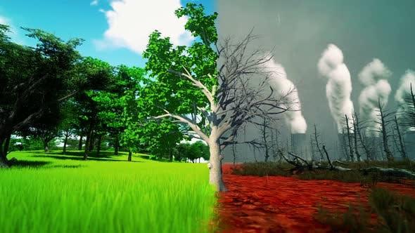 Environmental And Global Warming Concepts