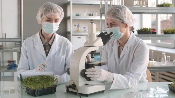 Thumbnail for Two Female Scientists Working Together in Lab