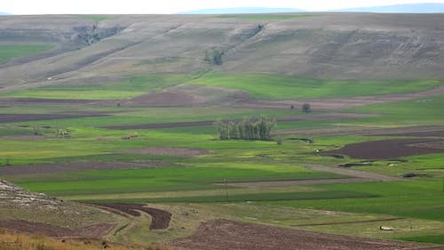 Brown Fields and Large Valley Between Hills in Soft Mesa Mountain Topography
