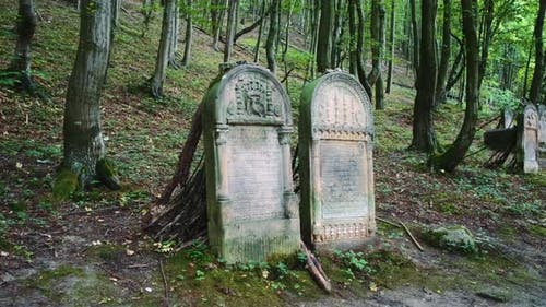 Two Tombstones in Old Cemetery