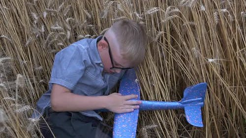 A boy sleeps in a wheat field with a toy airplane.