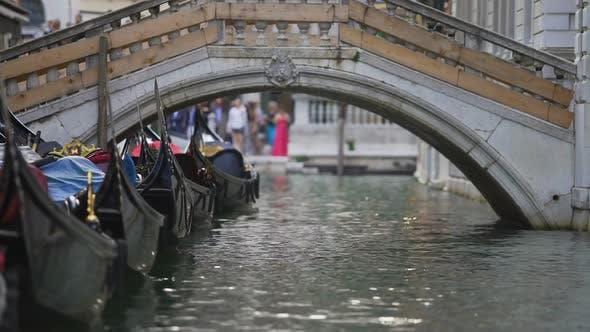 Thumbnail for Dekorierte Gondeln aufgereiht warten auf Touristen auf Fahrt auf Canal Grande, Venedig