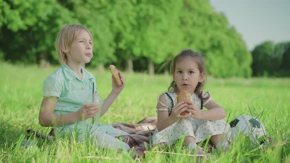 Portrait of Two Charming Children Eating Croissants and Drinking Juice on Sunny Summer Meadow. Blond