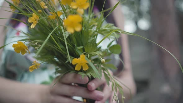 Cover Image for Wildflowers in Female Hands Outdoors
