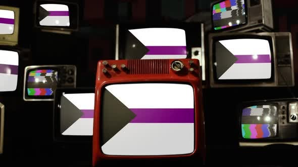 Thumbnail for Demisexual Pride Flags on Retro TVs.