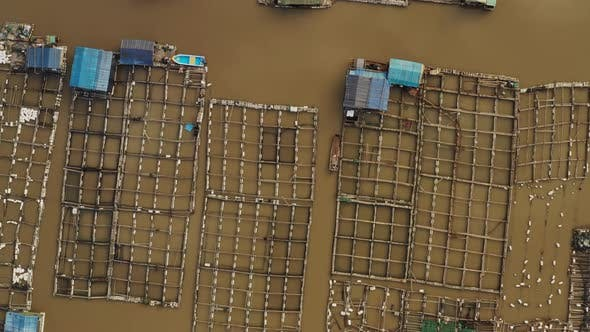 Thumbnail for Flying over floating fish farms in China