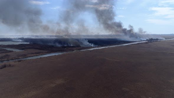 Thumbnail for Nature Disaster, Large Flames Fast Moving By Dry Field with Black Smoke Going Up To Heaven Near