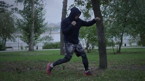 Boxer Training Outdoor