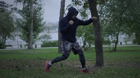 Thumbnail for Boxer Training Outdoor