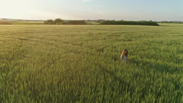 Thumbnail for Girl Walking in Field at Sunset, Flying Around