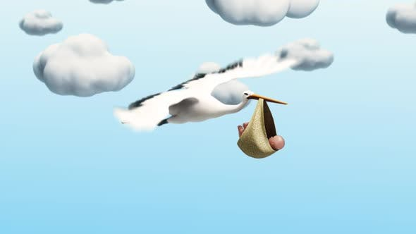Cover Image for Stork Carrying A Baby 1