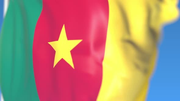 Thumbnail for Waving National Flag of Cameroon