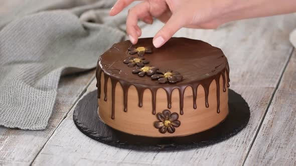Thumbnail for Confectioner-baker decorate beautiful cream cake with chocolate flowers