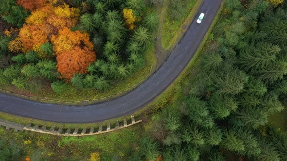 Aerial View Of Mountain Road At The Autumn Forest 2