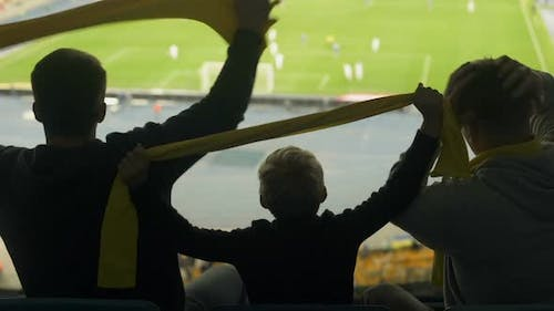 Male Friends With Child Watching Football at Stadium, Adrenaline and Emotions