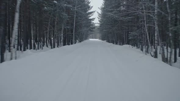 Thumbnail for Driving Along Forest Road in Winter