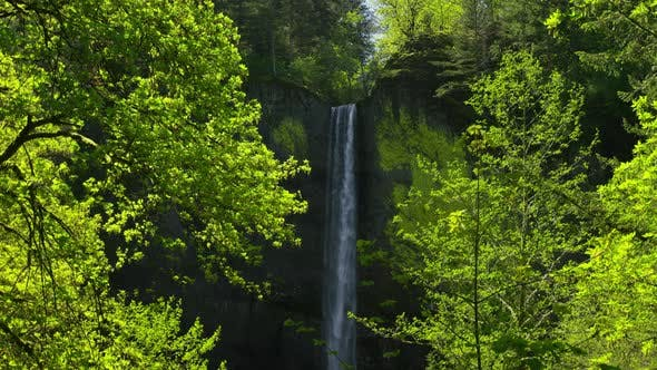 Thumbnail for Waterfall framed by trees, Columbia River Gorge, Oregon
