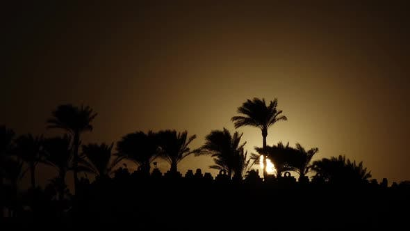 Thumbnail for Sunrise on the Beach Around the Ocean and Palm Trees. Time Lapse