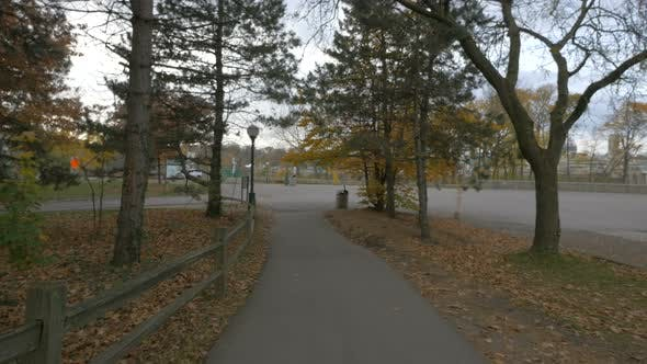 Thumbnail for Park alley in the autumn