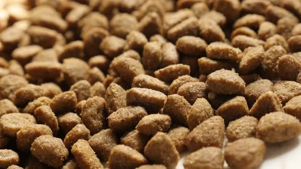 Food pellets for cats or dogs close-up 4K 2160p 30fps UltraHD panning footage - Dry meal animal meal