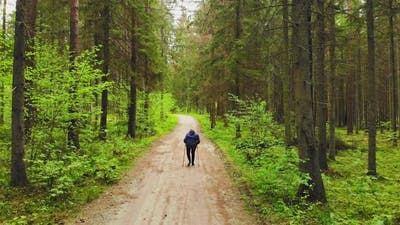 Woman Walking And Exercising On Forest Trail