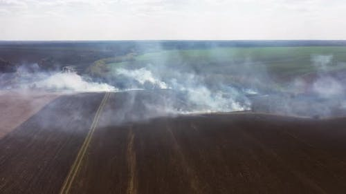 The Big Extensive Fire in the Field